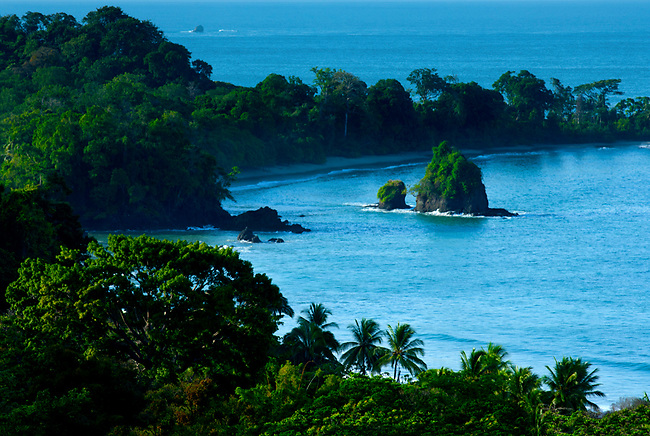 Lush tropical vegetation and stunning shoreline of Manuel Antonio National Park, were the rainforest meets the sea.