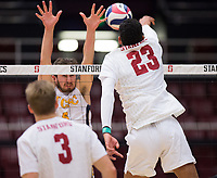 STANFORD, CA - January 5, 2019: Jaylen Jasper, Paul Bischoff at Maples Pavilion. The Stanford Cardinal defeated UC Santa Cruz 25-11, 25-17, 25-15.