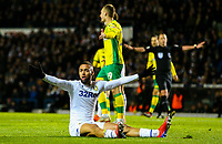 Leeds United's Kemar Roofe appeals for a penalty<br /> <br /> Photographer Alex Dodd/CameraSport<br /> <br /> The EFL Sky Bet Championship - Leeds United v Norwich City - Saturday 2nd February 2019 - Elland Road - Leeds<br /> <br /> World Copyright © 2019 CameraSport. All rights reserved. 43 Linden Ave. Countesthorpe. Leicester. England. LE8 5PG - Tel: +44 (0) 116 277 4147 - admin@camerasport.com - www.camerasport.com