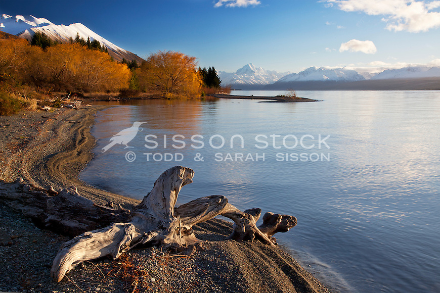 Snow covered Mt Cook / Aoraki on an autumn morning from the shores of Lake Pukaki, McKenzie Country