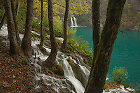 A lush canyon fed by 3 rivers creates the 16 terraced lakes and waterfalls of Plitvice national park in Croatia