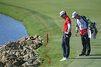 Rafael Cabrera Bello (ESP) looks over his approach shot that landed near the rocks on 18 during round 1 of the Arnold Palmer Invitational at Bay Hill Golf Club, Bay Hill, Florida. 3/7/2019.<br /> Picture: Golffile | Ken Murray<br /> <br /> <br /> All photo usage must carry mandatory copyright credit (© Golffile | Ken Murray)