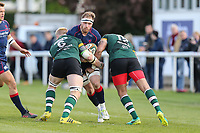 Joe Atkinson of London Scottish (centre) looks for a way through Ben Morris of Nottingham Rugby (3rd right) and Vili Hakalo of Nottingham Rugby (right) during the Greene King IPA Championship match between London Scottish Football Club and Nottingham Rugby at Richmond Athletic Ground, Richmond, United Kingdom on 15 April 2017. Photo by David Horn.