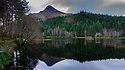 Glencoe Lochan, Ballachulish, Scotland, UK. 08.01.2019. The Pap of Glencoe (Sgorr na Ciche) and fir trees are reflected in the still waters of Glencoe Lochan, a man-made loch, Ballachulish, Highlands, Scotland. Photograph © Jane Hobson.