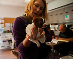 Paw Fund & Furry Friends--November Clinic--Antioch Animals Services--2014