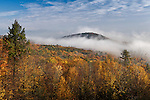 Fog intersperses with autumn color over the north Quabbin watershed.