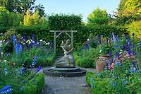 """Jardins du pays d'Auge (mention obligatoire dans la légende ou le crédit photo):.""""jardin de l'amour courtois"""" formé de 4 carrés bordés de buis avec rosiers et Delphinium."""