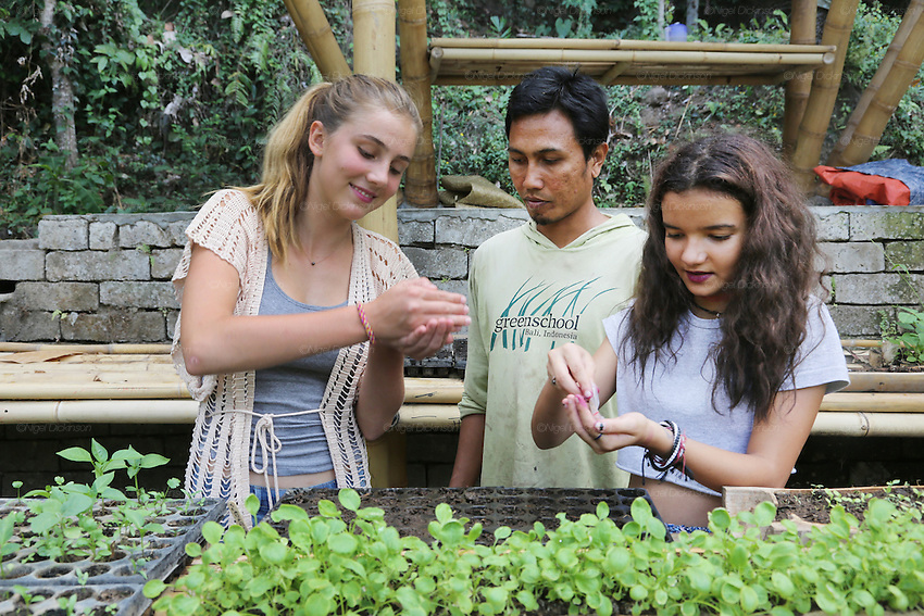 Final year student class in organic gardening<br />