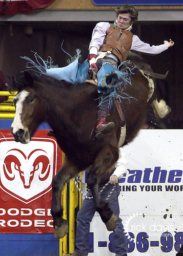1/23/09--Photo by Rick Davis--PRCA cowboy Casey Cason of Clarendon, Texas scores a 75 point ride on the Kesler Rodeo Company bronc Alley Agent during action at the 103rd National Western Stock Show and Rodeo in Denver, Colorado.