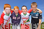Enjoying the Kelloggs Hurling Cul Camps in Causeway on Friday were: Dylan Murphy, Adam Burke, Dean Fitzpatrick and Sean Sheehan.