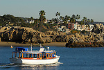 Belle near Corona Del Mar, Newport Beach