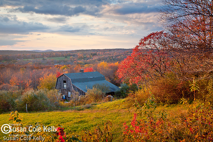 Autumn sunset on a farm in Litchfield, CT, USA