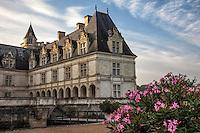 Chateau de Villandry's uniqueness lies in its unique 16th century expansive, geometric gardens