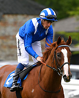 Jurz ridden by Jim Crowley goes down to the start of The Dee Wilks Against The Odds Confined Novice Stakes (Div 2) during Afternoon Racing at Salisbury Racecourse on 12th June 2018