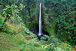 Akaka Falls, Akaka Falls State Park, Hawaii, USA<br />