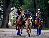 ELMONT, NY - JUNE 07: Justify heads to the track to gallop as horses prepare Thursday for the 150th running of the Belmont Stakes at Belmont Park on June 7, 2018 in Elmont, New York. (Photo by Scott Serio/Eclipse Sportswire/Getty Images)