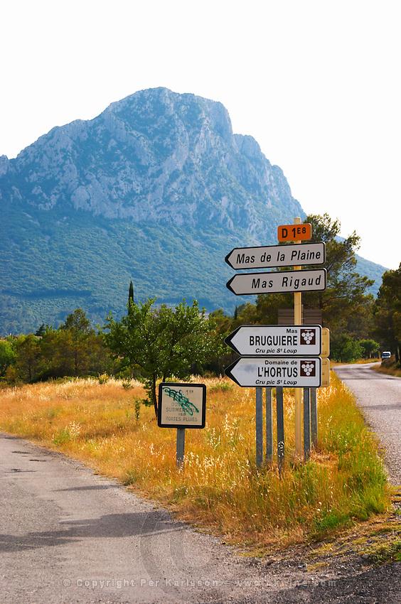 Mas de la Plaine, Mas Rigaud, Mas Bruguiere, Domaine de l'Hortus. The Pic St Loup mountain top peak. Pic St Loup. Languedoc. France. Europe.