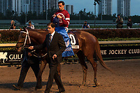 HALLANDALE BEACH, FL  JANUARY 27: #10 Gun Runner ridden by Florent Geroux after winning the Pegasus World Cup Invitational, at Gulfstream Park Race Track on January 27, 2018, p in Hallandale Beach, Florida. (Photo by Casey Phillips/ Eclipse Sortswire/ Getty Images)