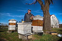 Beekeeper poses for portrait after preparing one set of his hives for colder weather.