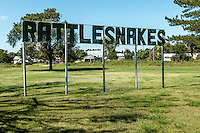 This sign used to be near the Lel exit on I 40 for reptile exhibitor E. Mike Allred.  The sign advertised the Regal Reptile Ranch, which has been in ruins for many years except for the sign itself.<br />