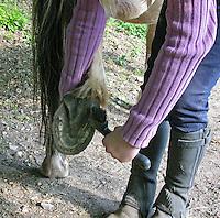 Mädchen beim Reitunterricht auf Ponyhof, Mädchen kratzt ihrem Reitpony die Hufe aus, Reiten, Reiterhof, Gestüt