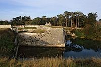 Europe/France/Poitou-Charentes/17/Charente Maritime/Ile d'Aix: Le fort de la rade (XVIIème) - Forteresse Vauban