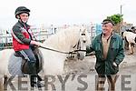 Ballyduff Horse Fair: Martin Murphy & Tom  Foran attending the Ballyduff Horse fair  on Sunday last.