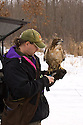 00432-028.04 Falconry (DIGITAL) Falconer is unloading a red-tailed hawk from it box in back of pickup prior to hunt.  V7R1