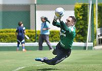 SÃO PAULO.SP. 03.04.2015 - PALMEIRAS TREINO - Fernando Prass goleiro do Palmeiras durante o treino na Academia de Futebol zona oeste na nesta sexta feira 03.  ( Foto: Bruno Ulivieri / Brazil Photo Press )