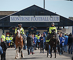 Police horses at the entrance to Links Park ahead of the visit of Rangers to Montrose