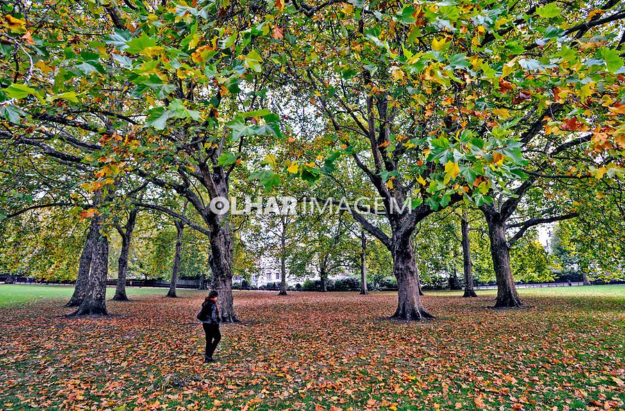 Outono no parque Green Park. Londres. Inglaterra. 2008. Foto de Juca Martins.