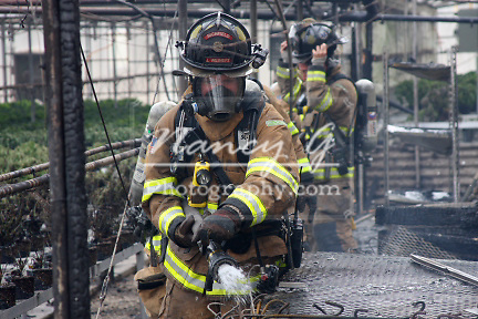 A firefighter using a water hoseline to extinguish a hot spot at a fire in a greenhouse business