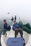 Earthwatchers Relax Out In The Open Ocean Waiting For Sharks To Be Lured In