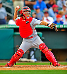 1 March 2009: St. Louis Cardinals' catcher Jason LaRue in action during a Spring Training game against the Florida Marlins at Roger Dean Stadium in Jupiter, Florida. The Cardinals outhit the Marlins 20-13 resulting in a 14-10 win for the Cards. Mandatory Photo Credit: Ed Wolfstein Photo
