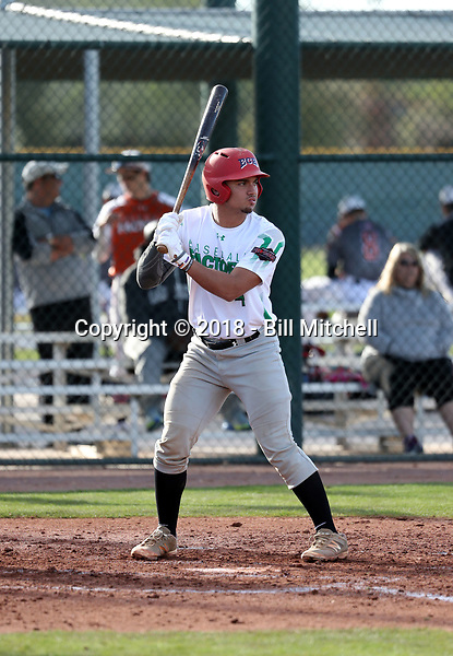 Jonathan French takes part in the 2018 Under Armour Pre-Season All-America Tournament at the Chicago Cubs training complex on January 13-14, 2018 in Mesa, Arizona (Bill Mitchell)