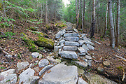 May 2016 - The large eroded area behind the moss covered rock, on the left-hand side of the Mt Tecumseh Trail in Waterville Valley, New Hampshire was not there when this staircase was built in 2011. See image number SC1116291 for a comparison of how this trail erosion has worsened over the years.