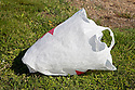 "Close up of a plastic bag. Volunteers in the City of Millbrae participated in California Coastal Cleanup Day on 9/19/09. Participants cleaned up inland locations throughout the city as well as at Bayfront Park on the San Francisco Bay shoreline. The inland cleanup efforts were important because, according to the California Coastal Commission, ""past Coastal Cleanup Day data tell us that most (between 60-80 percent) of the debris on our beaches and shorelines comes from inland sources, traveling through storm drains or creeks out to the beaches and ocean. Rain or even something as simple as hosing down a sidewalk can wash cigarette butts, bits of styrofoam, pesticides, and oil into the storm drains and out to the ocean."" The California Coastal Cleanup Day (http://www.coastal.ca.gov/publiced/ccd/ccd.html) is sponsored by the California Coastal Commission and is a part of the International Coastal Cleanup organized by The Ocean Conservancy."