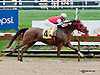 Royal Richess winning at Delaware Park on 8/28/2013