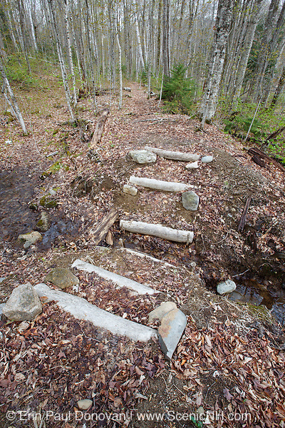 Low impact trail work along Little East Pond Trail in Livermore, New Hampshire USA.