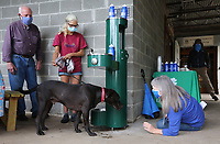 Amy Wilson (from right), director of public affairs with the Beaver Water District, gets a close look of Eli Friday, July 31, 2020, getting a drink of water out of the new Hydration Station as Christine Saffian and Frank Sharp watch during a dedication ceremony at the Ozark Smokehouse in Fayetteville. The Beaver Water District partnered with the Northwest Arkansas Land Trust, the Ozark Smokehouse and Frank Sharp to put the station in place. The hydration station is located just outside the Kessler Mountain Nature Center to provide clean drinking water to students, hikers and pets who visit the Outdoor Classroom's 0.6 mile Interpretive Loop Trail, which is open to the public from sunrise to sundown seven days a week. The trail is accessed from the picnic area just outside the Ozark Smokehouse. The new addition of 82,500-square-feet will nearly double the size of the 88,000-square-foot main library. Check out nwaonline.com/200801Daily/ and nwadg.com/photos for a photo gallery.<br /> (NWA Democrat-Gazette/David Gottschalk)