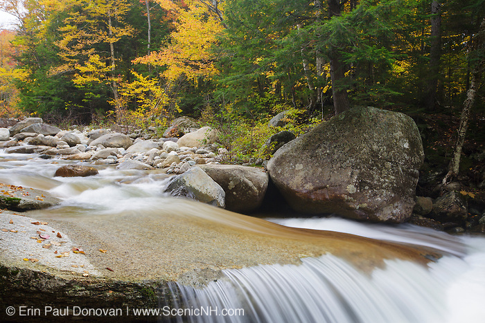 Little River during the autumn months in Bethlehem, New Hampshire.
