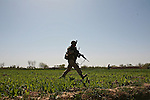 Marines from Company L, 3rd Battalion, 6th Marine Regiment run across an opium field towards a compound where they believe the Taliban machine gun is positioned. The shooting has stopped and with Cobra attack helicopters now circling overhead, it becomes increasingly clear that the fighters have fled. March 11, 2010. DREW BROWN/STARS AND STRIPES .