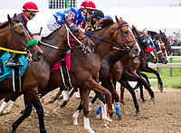 BALTIMORE, MD - MAY 20: The field breaks from the gate at the start of the 142nd Preakness Stakes on Preakness Stakes Day at Pimlico Race Course on May 20, 2017 in Baltimore, Maryland. Cloud Computing  #2, ridden by Javier Castellano, won the race. (Photo by Douglas DeFelice/Eclipse Sportswire/Getty Images)