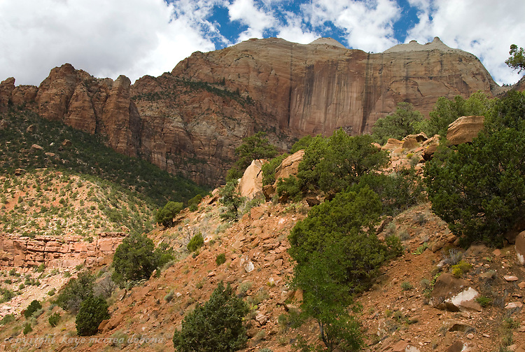 Landscapes - Zion National Park & Kolob Canyons