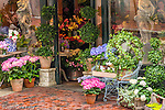 Flower shop on Beacon Hill, Boston, Massachusetts, USA