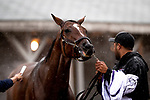 November 1, 2018: at Churchill Downs on November 1, 2018 in Louisville, Kentucky. Alex Evers/Eclipse Sportswire/CSM