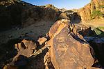 Petroglyphs, Gobi Gurvansaikhan National Park, Mongolia
