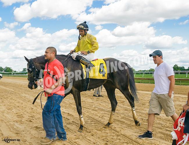 Willow Bob winning at Delaware Park on 9/7/16