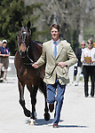 April 23, 2014: Bay My Hero and William Fox-Pitt during the first horse inspection at the Rolex Three Day Event in Lexington, KY at the Kentucky Horse Park.  Candice Chavez/ESW/CSM
