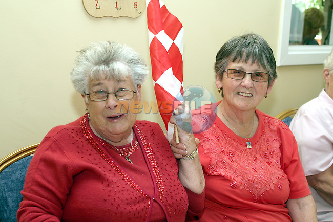 Theresa O'Driscoll and Bernaette Thornton at the Senior Citizens Summer Party...Photo NEWSFILE/Jenny Matthews.(Photo credit should read Jenny Matthews/NEWSFILE)....This Picture has been sent you under the condtions enclosed by:.Newsfile Ltd..The Studio,.Millmount Abbey,.Drogheda,.Co Meath..Ireland..Tel: +353(0)41-9871240.Fax: +353(0)41-9871260.GSM: +353(0)86-2500958.email: pictures@newsfile.ie.www.newsfile.ie.FTP: 193.120.102.198.